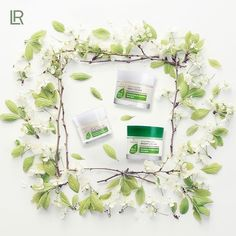 Lr Beauty, Beauty Care, Aloe Vera, Face Care, Skin Care, Aloe On Face, Health And Beauty, Cosmetics, Beautiful