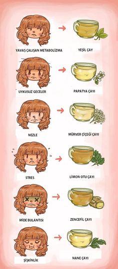 Hangi bitkisel çay hangi rahatsızlığa iyi gelir