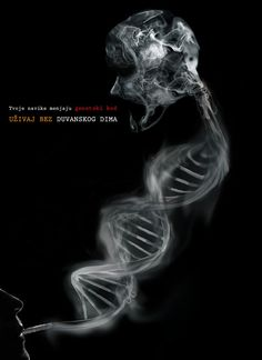 Anti smoking poster on Behance
