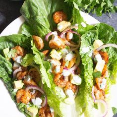 These BLACKENED SHRIMP LETTUCE WRAPS are one of our favorite healthy lunches. They are a tiny bit spicy but the avocado and cilantro lime cream tame the spice a bit and they are light but so filling! Shrimp Lettuce Wraps, Lettuce Tacos, Avocado Wrap, Blackened Shrimp, Cilantro Lime Sauce, New Recipes, Pasta Recipes, Yummy Recipes, Vegan Recipes