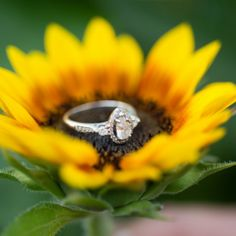 This sunflower engagement session is absolutely to die for! photos by Jason Mullen Photography
