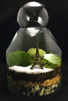 1000+ images about miniature garden on Pinterest Miniature gardens ...