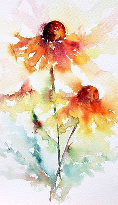 Image result for water color cone flowers.