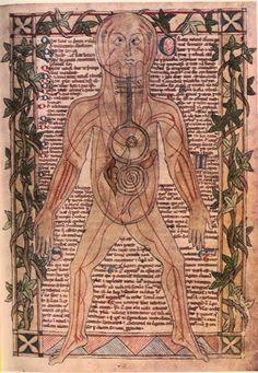 BioEcleticA: Breve História da Anatomia e Fisiologia Humana