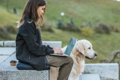 side view of freelancer using laptop while sitting with dog in park Stock Photo , Music Images, Music Pictures, Stock Pictures, Free Stock Photos, Royalty Free Photos, Side View, Listening To Music, Birds In Flight, Labrador Retriever