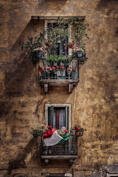 #Venice windows