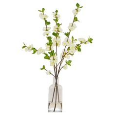 "Check out this item at One Kings Lane! 25"" Quince in a Bottle, Faux"