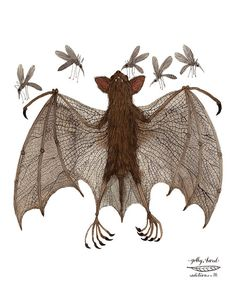 fruit bat specimen print by golly bard by GollyBard on Etsy, $36.00
