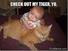 Fun Meme Humor & Jokes | All posts tagged 'Baby Meme'
