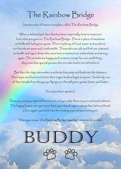 Rainbow Bridge Poem - Bing Images