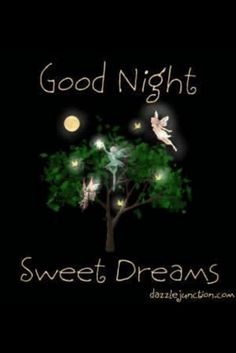 Sweet Dreams Good Night All Good Night Funny, Good Night Friends, Good Night Wishes, Good Night Sweet Dreams, Good Night Image, Good Morning Good Night, Day For Night, Good Night Greetings, Good Night Messages