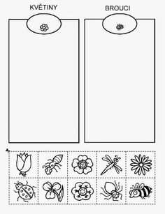 Z internetu – Sisa Stipa – Webová alba Picasa Preschool Learning Activities, Preschool Worksheets, Educational Activities, Kids Learning, Sudoku, Insect Crafts, Stipa, Alphabet Coloring Pages, Preschool Education