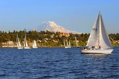 PSSI serves Seattle and Tacoma and is home to four ASA Instructors of the Year! We offer sailing club, yacht sharing, and exotic sailing vacations. Stuff To Do, Things To Do, Nantucket Island, Home And Away, Historical Sites, Mount Rainier, Sailing, Exotic, Culture
