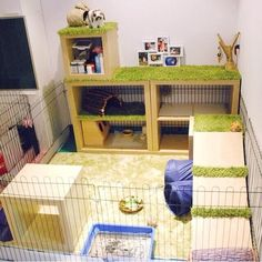 25 Design a Rabbit Playground - Kaninchen House Rabbit, Pet Rabbit, Hamsters, Rodents, Rabbit Playground, Rabbit Habitat, Rabbit Enclosure, Bunny Cages, Indoor Rabbit Cages