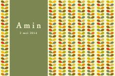 Geboortekaartje retro meisje of jongen - retro blaadjes - Pimpelpluis - https://www.facebook.com/pages/Pimpelpluis/188675421305550?ref=hl (# simpel - eenvoudig - retro - naam - origineel - rood - groen)