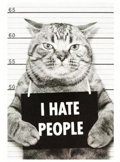 I hate people! I Love Cats, Cute Cats, Funny Cats, Animals And Pets, Funny Animals, Cute Animals, Crazy Cat Lady, Crazy Cats, Cat Memes