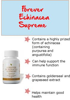 Echinacea has a rich tradition in the culture of the North American plains Indians, who used than nay other plant to help maintain their health during the winter months.