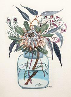Mixed Natives in Blue Jar by Sally Browne Botanical Art, Botanical Illustration, Illustration Art, Australian Flowers, Australian Art, Glas Art, Guache, Arte Floral, Floral Illustrations