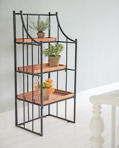 Utilize every inch of space with this folding corner plant stand. Or put two together to form a semi-circle. Resembles wrought iron but is actually steel. Bamboo Plants, Outdoor Plants, Potted Plants, Hydroponic Plants, Plants Indoor, Plant Pots, Green Plants, Hydroponics, Hanging Bar