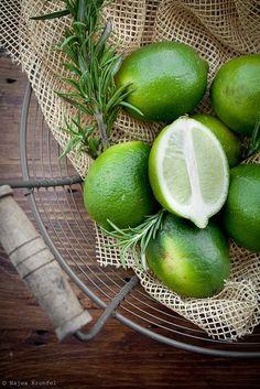 Limes via wingsviewathome.tumblr.com