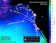 Scientists detect highest levels of Fukushima radiation off the coast of California taken to date http://www.fukushimawatch.com/2015-12-07-scientists-detect-highest-levels-of-fukushima-radiation-off-the-coast-of-california-taken-to-date.html