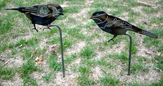 Check out this Etsy item! Hey, I found this really awesome Etsy listing at https://www.etsy.com/listing/509106992/bird-yard-art-metal-garden-bird-nature #birdyardart #metalartcolorado #etsy
