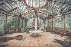 A good garden may have some weeds #artndecay #abandoned #abandonedplaces #urban #green #greenhouse #lost #garden #forgotten