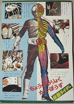 イメージ 3 Kamen Rider!