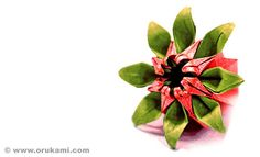 Mio Tsugawa Origami Marguerite Flower by Himanshu (Mumbai, India), via Flickr