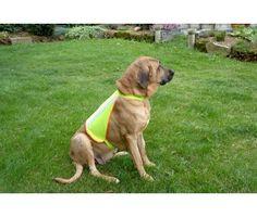 Buster Reflective Dog Vest Large 16-25kg £17.49