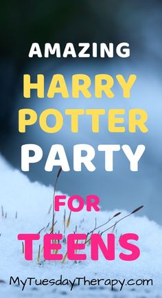Host a Magical Harry Potter Party On Small Budget 18th Birthday Party Themes, Birthday Party Games For Kids, Fall Birthday Parties, Birthday Party Tables, Teen Birthday, Themed Parties, Harry Potter Party Games, Harry Potter Party Decorations, Easy Party Decorations