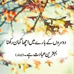 Only islamic images Urdu Quotes Islamic, Hadith Quotes, Islamic Phrases, Islamic Teachings, Islamic Inspirational Quotes, Quran Quotes, Islamic Msg, Islamic Images, Quran Verses