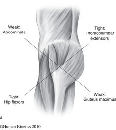 Tight hip flexors and activating glutes. ~SP