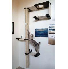 Complexe de gratte-ciel chat hamac par CatastrophiCreations