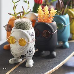 The days of Chia Pet popularity may be gone, but that has not stopped us from a fascination of seeing plants as hair. In a new product series called United Cacti And Succulents, Potted Plants, Indoor Plants, Plant Pots, Succulent Pots, Cactus Flower, Flower Pots, Cactus E Suculentas, Deco Floral