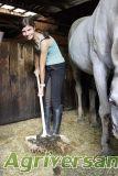 Dung-Spänegabel groß PRO GE7642 Gabel, Horses, Animals, Animales, Animaux, Animal, Animais, Horse