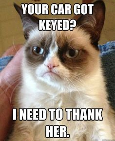 your car got keyed i need to thank her - Grumpy Cat