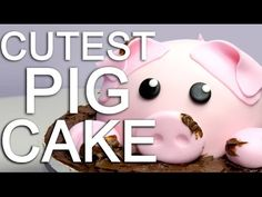 Pig In Mud Cake Instructions Are So Easy | The WHOot