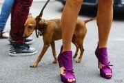 Milan Fashion Week Spring 2013 Street Style - - Vogue