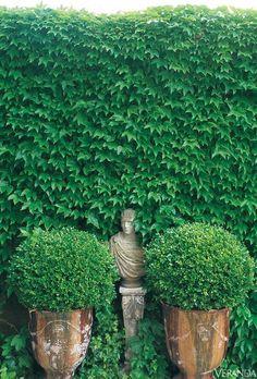 dustjacket attic: Gardens | France | Ivy & Roses