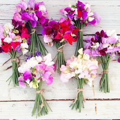 Flowers are a popular birthday gift, make it personal by choosing the recipient's birth flower. Take a look at April's birth flowers, daisies & sweet peas. Sweet Pea Bouquet, Sweet Pea Flowers, Beautiful Flowers, Sweet Pea Bridesmaid Bouquet, Beautiful Things, Month Flowers, Summer Flowers, Winter Flowers, Wedding Bouquets