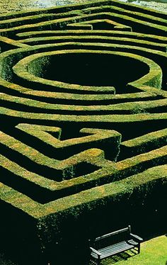 Nice close up of a maze
