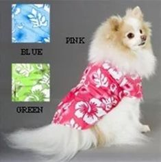 86 Best Hawaii Pet Clothes Images Pet Clothes Hawaii Dog