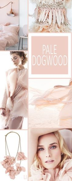 Exclusive and luxurious interiors with Pale Dogwood by Pantone