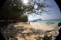 Dicas de Ko Phi Phi, Tailândia - Juju na Trip Beach Travel, Kos, Bamboo, Wanderlust, Island, Water, Summer, Outdoor, Gripe Water