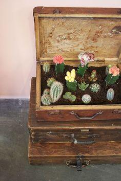 Décoration intérieure avec des plantes #urbanjunglebloggers: