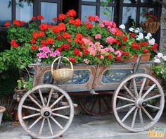 Carroça transformada em jardineira