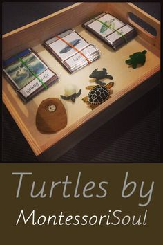 Comprehensive guide to Turtle activities including links to Free Montessori downloads