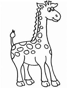 Cute Giraffe By Agency