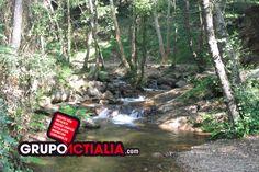Gualba. Grupo Actialia ofrece sus servicios en Gualba: Diseño Web, Diseño Gráfico, Imprenta, Márketing Digital y Rotulación. http://www.grupoactialia.com o Teléfono: 935.160.047